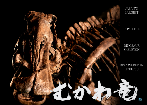 北海道胆振東部地震からの復興をめざして! ~ 未来につなぐ!「むかわ竜」全身復元骨格(レプリカ)製作プロジェクト ~