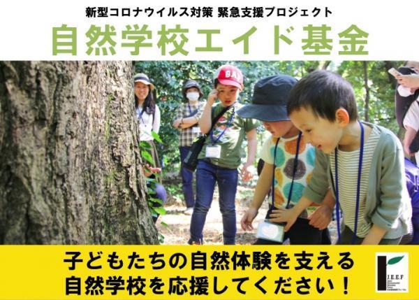 子どもたちの自然体験を支える自然学校を応援してください!「自然学校エイド基金」