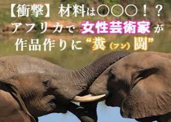 """アフリカゾウの""""ウンコ""""で紙を作り、芸術に活用! 密猟から象を救いたい!!"""