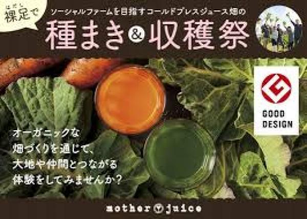 五感で感じる土の感触、野菜の甘さ グッドデザイン賞のジュース畑で収穫祭を開催!