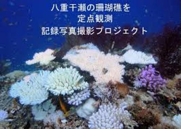 未来の子供たちのために日本最大級の珊瑚礁群の定点観測データベースを作りたい!