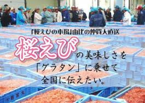 「桜えびの本場」静岡・由比の仲買人の思い。桜えびの美味しさを全国に伝えたい。