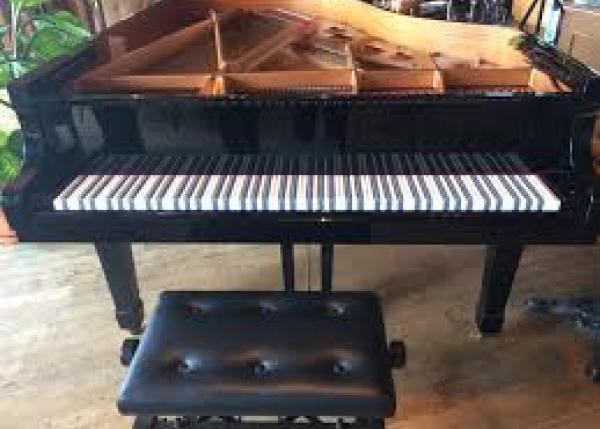 究極のピアノ鍵盤「王様鍵盤」を創り、プロピアニスト・菅野邦彦の名人芸を聴こう