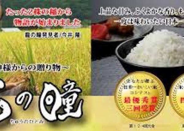 川嶋舟先生構想・幻の米・龍の瞳でつくる限定酒~福祉施設の人たちの挑戦