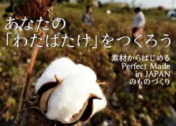 【Perfect Made in JAPANをサステナブルに】「わたのはな」サポーターファンド