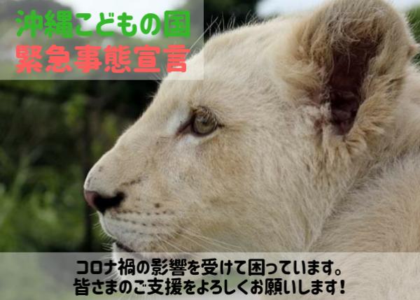 【コロナ支援】動物たちを守りたい!沖縄唯一の動物園『沖縄こどもの国』に支援を!