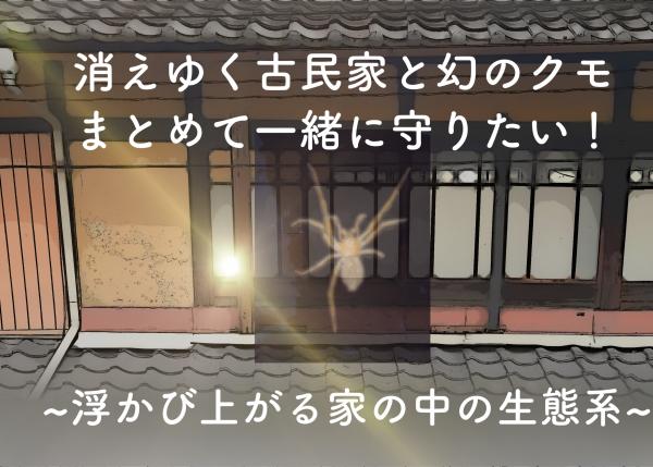 【文化で生物を守る】消えゆく京都の古民家と「幻のイヨグモ」をまとめて一緒に守りたい!